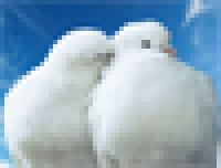 Гороскоп совместимости (по Скайпу + аудиозапись)